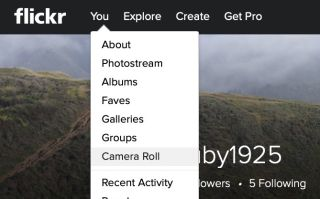 How to Download Your Photos From Flickr Before They Disappear