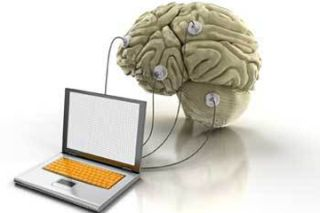 brain connected to computer