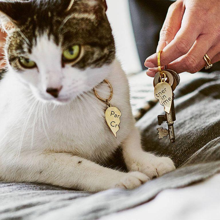 Partner In Crime Pet Collar Charm