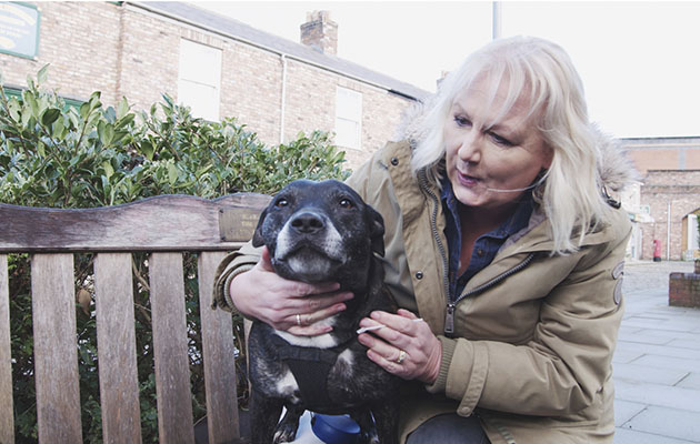 Britain's Top 100 Dogs shows Coronation Street star Sue Cleaver