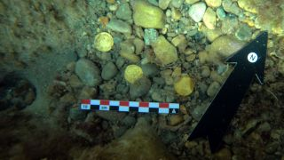 Freedivers in Spain notified the authorities after finding a handful of gold coins dating to the fall of the Western Roman Empire