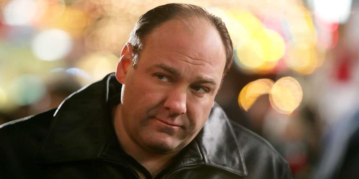 Tony Soprano in The Sopranos.