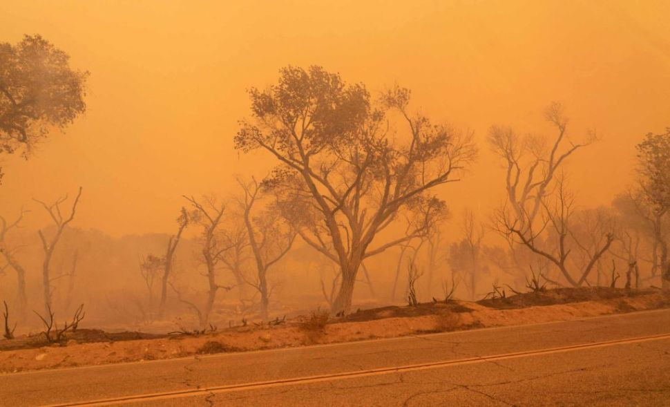 The planet is dying faster than we thought