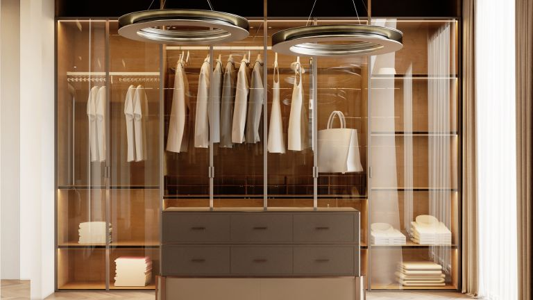 Walk in closet in a contemporary penthouse