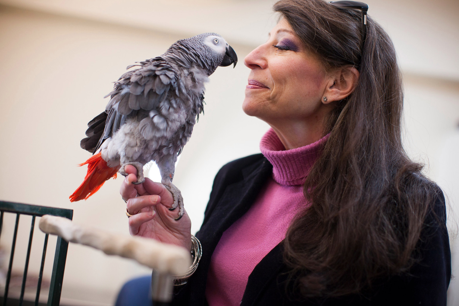 Griffin the parrot with psychologist Irene Pepperberg.