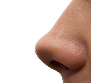 nose, smells, scent