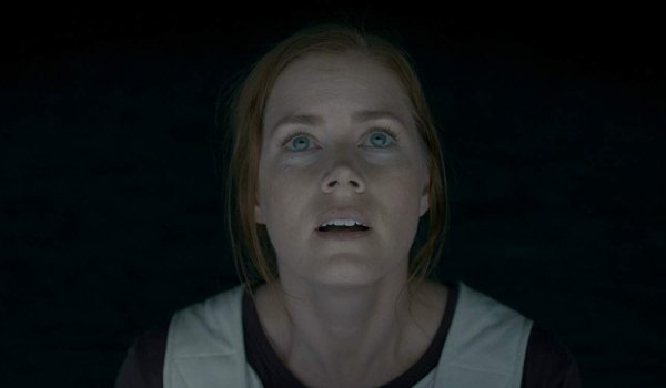 Arrival Amy Adams stares up at a Heptapod off screen
