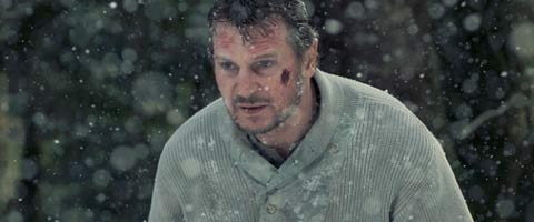 Liam Neeson Talks Working With A Different Joe Carnahan On