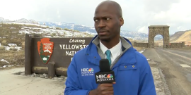 Local News Reporter Has Perfect Reaction To Seeing A Herd Of Bison Coming His Way