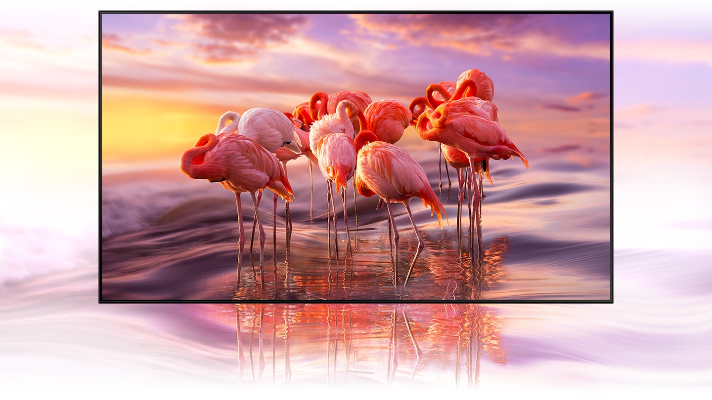 Samsung Dolby Vision vs HDR10+