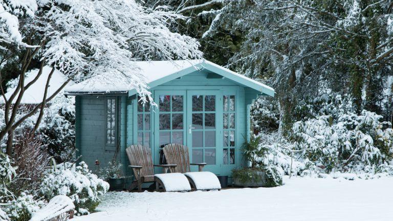 Winter garden covered in snow