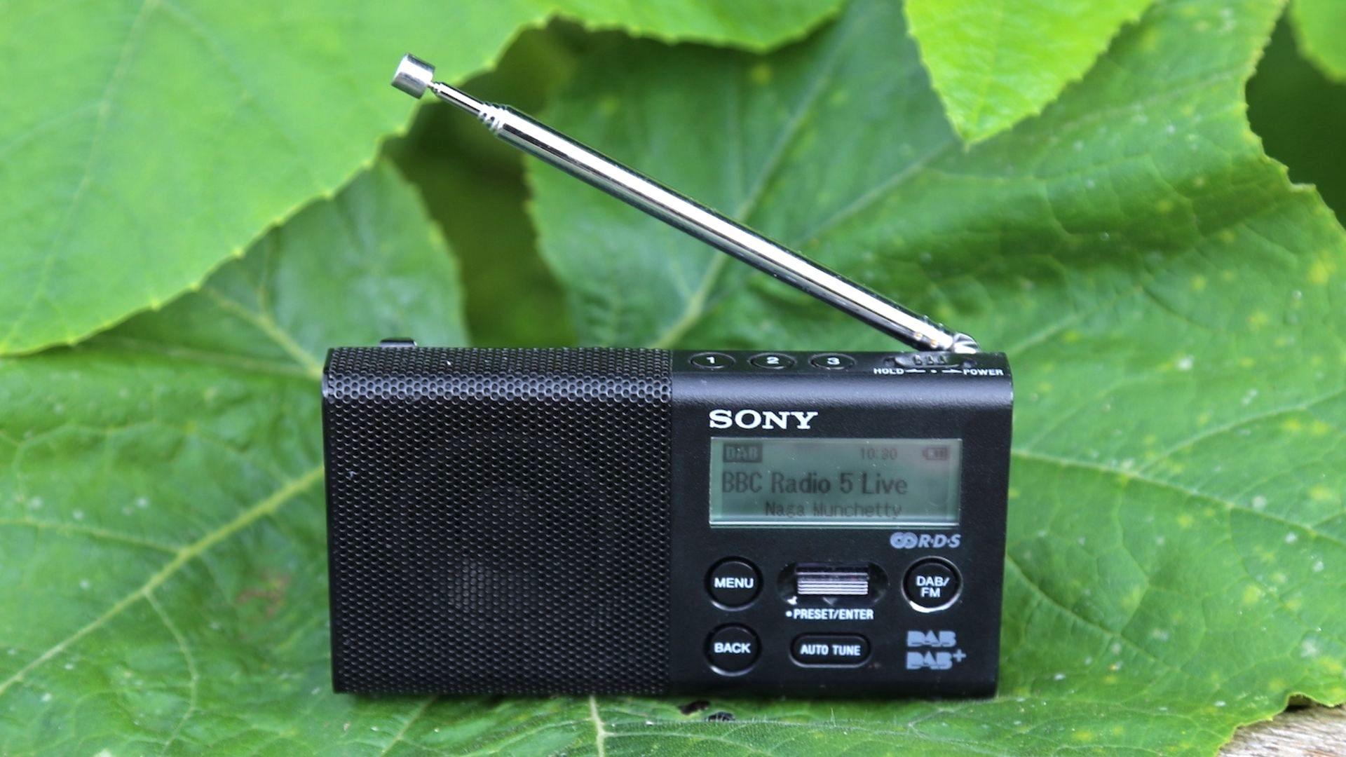 the sony xdr-p1 dab radio sat on a giant leaf