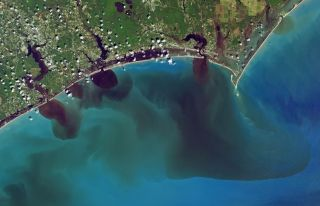 Snapped on Sept. 19th by NASA's Operational Land Imager on the Landsat 8 satellite, this image shows polluted waters following Hurricane Florence.