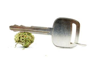 marijuana, weed, pot, driving, car key