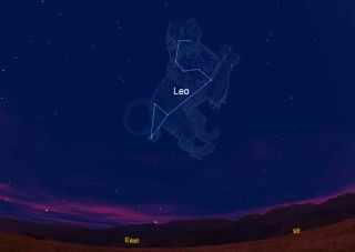 This sky chart shows where the constellation Leo, the Lion and its trademark sickle appear in the eastern sky as viewd from the Northern Hemisphere during spring. This chart is where the constellation appears at 8 p.m. EDT as viewed from the U.S. East Coa