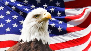 The American flag with an Eagle