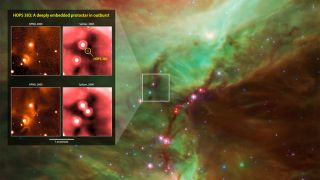 Outburst of a young protostar in Orion
