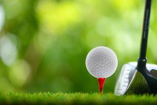 Golf survey