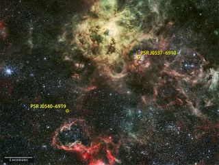 Extragalactic Gamma-ray Pulsar, PSR J0540-6919