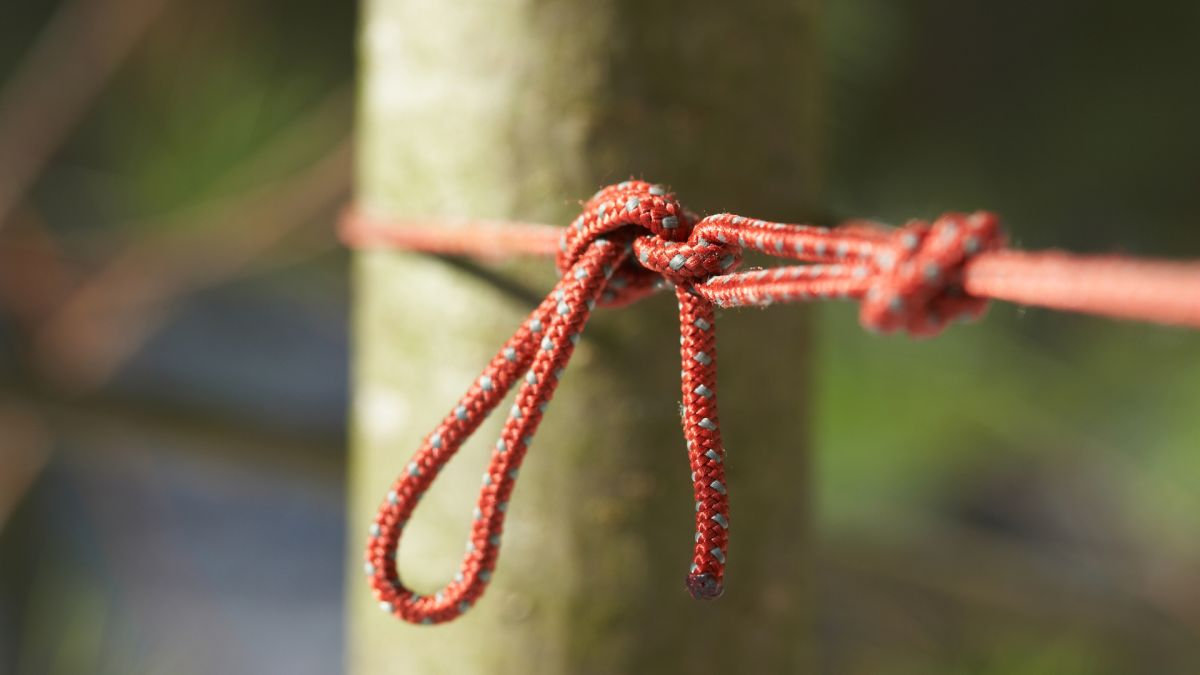 The best hiking and camping knots: for rigging shelters, repairs, hanging hammocks and more