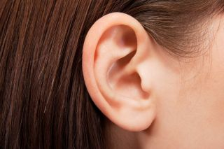 Ears: Facts, Function & Disease | Live Science