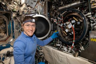 NASA Astronaut Celebrates Women's Equality Day in Space at Midpoint of Record-Breaking Flight