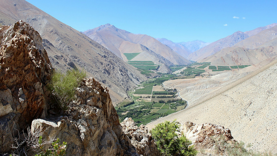 Chile's Elqui Valley