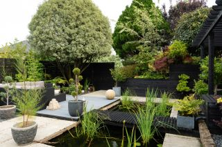 a garden design with an east asian theme was part of these renovators self build project
