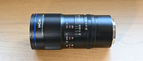 Laowa 100mm f/2.8 2x Ultra Macro APO review