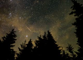 A Perseid meteor seen in a 30-second exposure image captured in Spruce Knob, West Virginia, on Aug. 11, 2021.