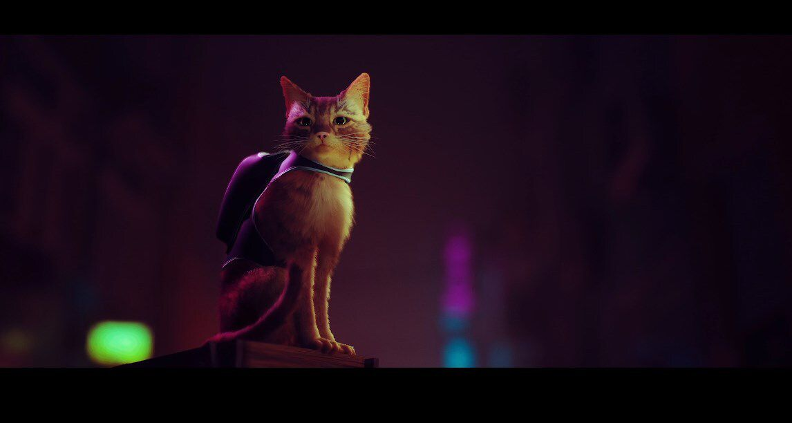 This week in PC Gaming: The Ascent, The Forgotten City, and cyberpunk kitties