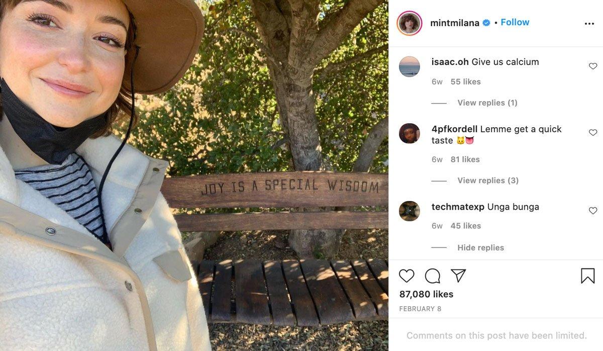 Vayntrub Instagram Trolls