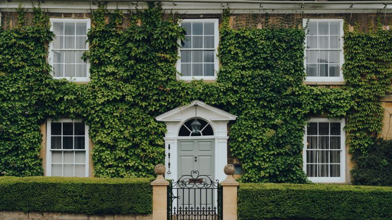 period home covered in ivy