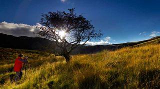 عکاس زیر یک درخت