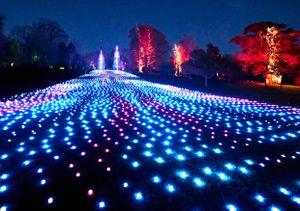 Christmas light trails 2020: Blenheim Palace, Festive Trail