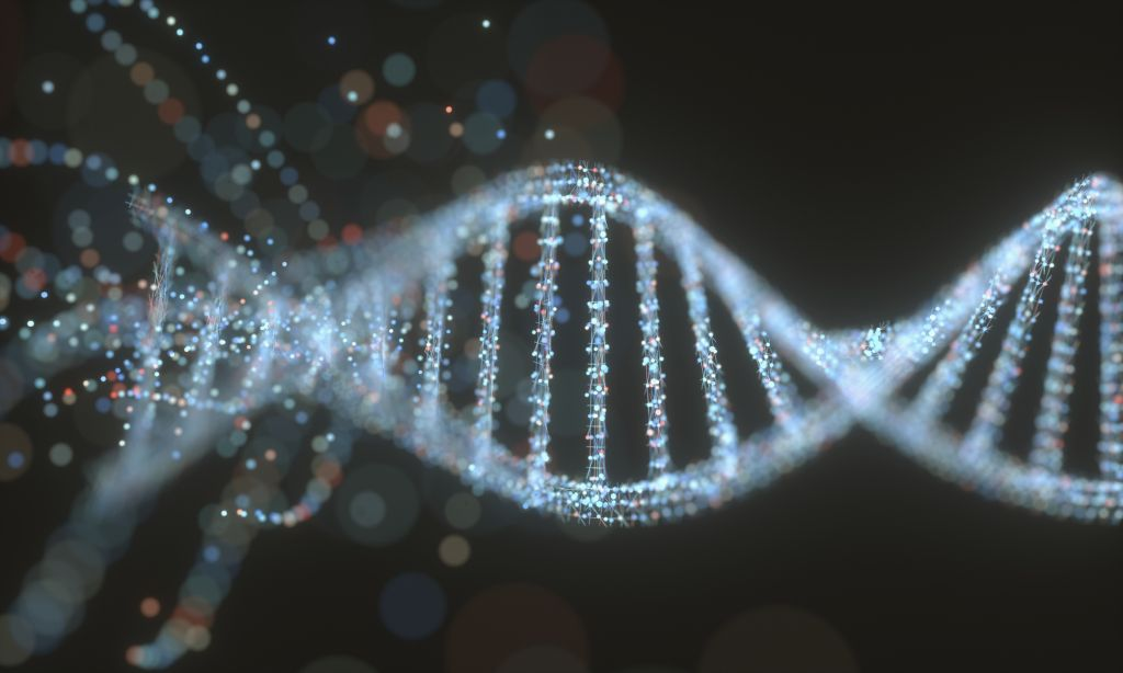 Mysterious protein makes human DNA morph into different shapes