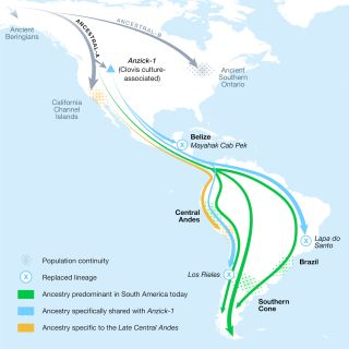 North and South America Migration