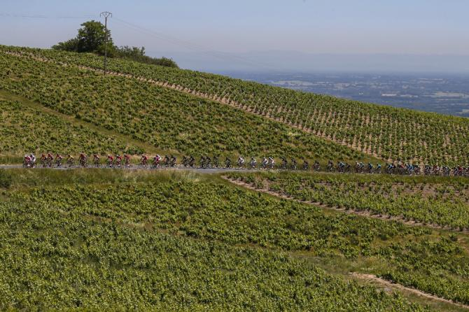 The stage passed through the Rhone valley vineyards
