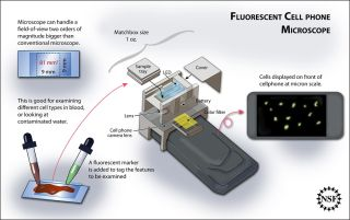 This scientific illustration depicts the cell phone microscope technology being developed by UCLA electrical engineer Aydogan Ozcan and his colleagues.