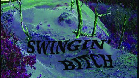 Cover art for Swingin' Bitch - Swingin' Bitch album