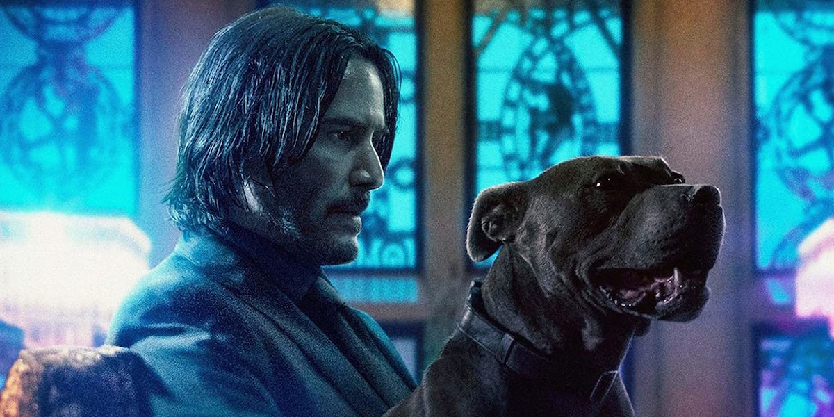John Wick and his dog