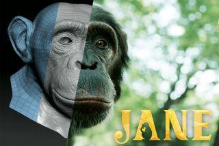 Jane series promo art.