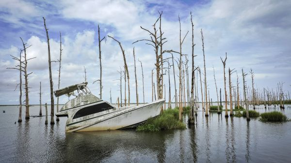Seas will likely rise even faster than worst-case scenarios predicted by climate models