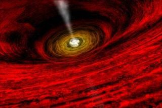 Monster Black Holes May Grow in Giant Star Cocoons