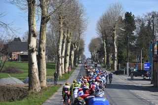 The long line of riders at Kuurne-Brussel-Kuurne