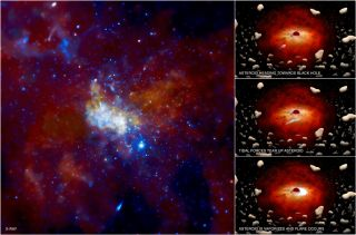 Black Hole Asteroids