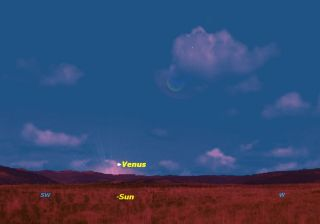 Venus Sky Map Jan. 8, 2014