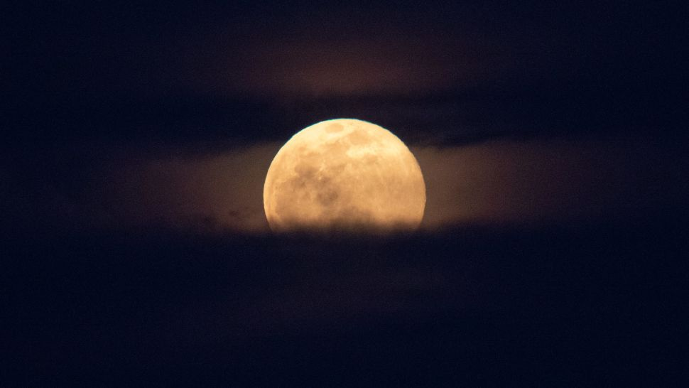 The Super Pink Moon of 2021 rises tonight, but it won't look pink