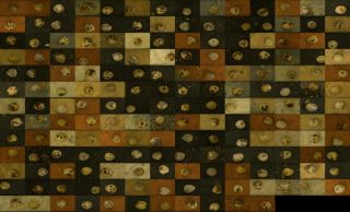 Quail egg camouflage grid