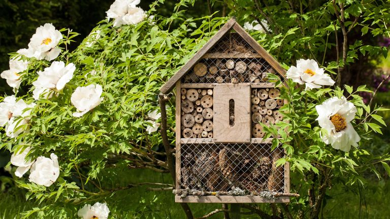 gardening jobs for October could include building your own bug hotel